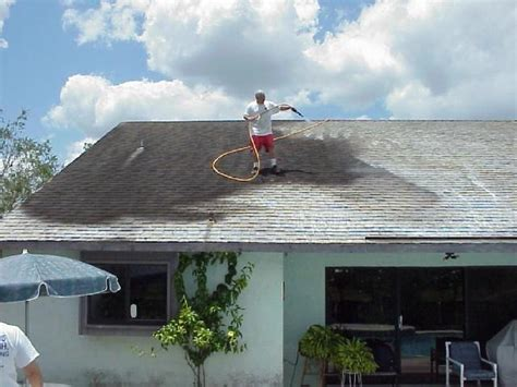 roof cleaning riverview fl apple roof cleaning ta florida
