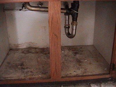 mold kitchen sink mold image library mold us epa 7843