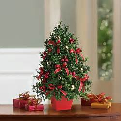 deck the halls tree bouquet winter holidays pinterest