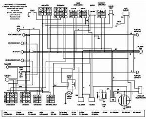 Yamaha Zuma Wiring Diagram