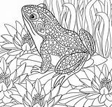 Coloring Paradise Pages Tropical Adult Printable Getdrawings Getcolorings Ad sketch template