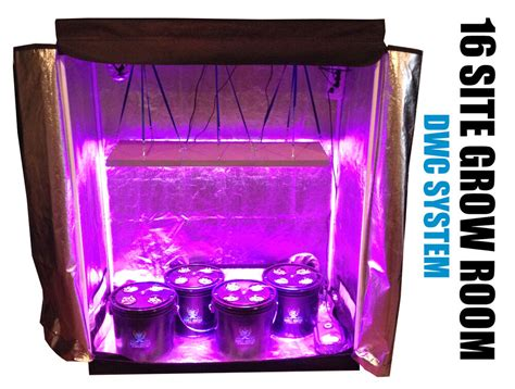 Led Light In Grow Room by 16 Site Hydroponic System Grow Room Complete Grow Tent