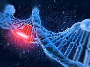 Unlike Tobacco Smoke E-cig Vapor Does Not Cause DNA ...