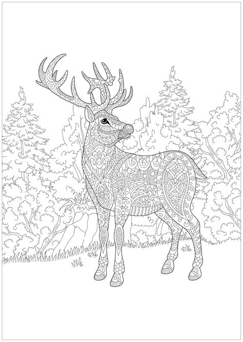 christmas deer   forest christmas adult coloring pages