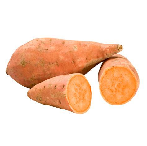 sweet potatoe sweet potato livegreen international incorporated