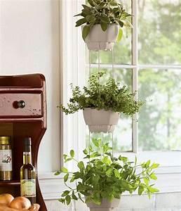 Jardiniere Interieur : mini jardini res et pots d int rieur aux herbes ~ Melissatoandfro.com Idées de Décoration