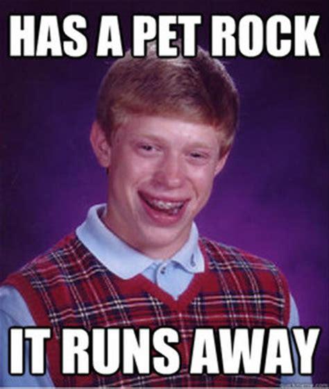 Pet Rock Meme - funny memes 50 pics