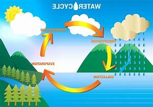 Diagram Of The Water Cycle For Kids