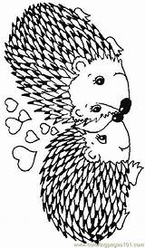Hedgehog Coloring Pages Hedgehogs Coloringpages101 sketch template