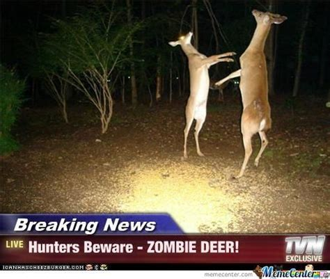Deer Memes - top 25 ideas about deer meme s on pinterest haha deer and zombies