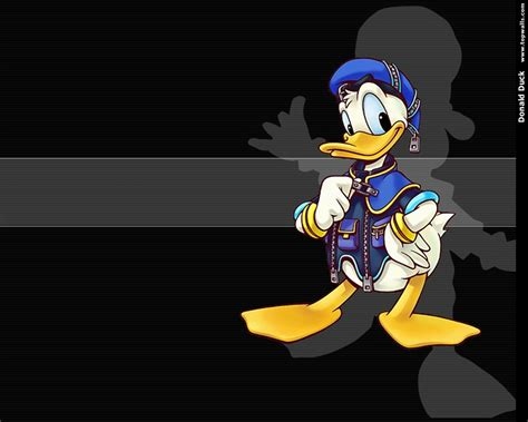 Animated Duck Wallpaper - animation pictures wallpapers donald duck wallpapers