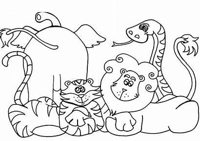 Coloring Preschool Pages Printable