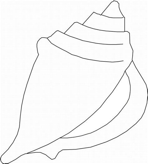 printable pictures  sea shells seashell coloring page