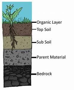Pics For > Types Of Soil For Kids Worksheets