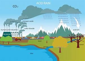 Of Diagram Rain Acid Of Pouluttion