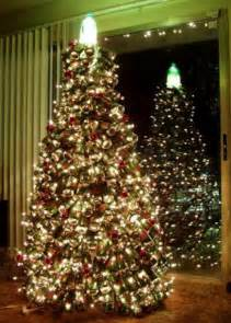 home depot christmas trees 2009 2010 letmeget com