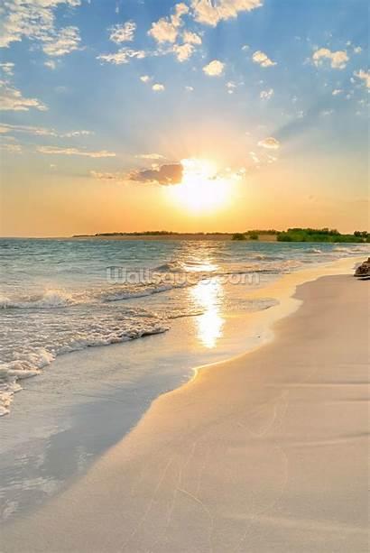 Beach Sunset Lockscreen Later Save