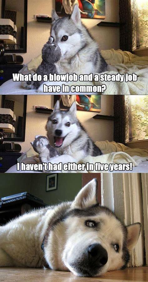 epic pix  gag  funny funny meme