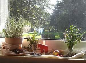 Bäume Beschneiden Jahreszeit : permakultur blog herbst ~ Yasmunasinghe.com Haus und Dekorationen