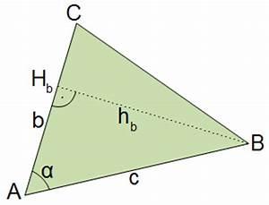 Dreiecksfläche Berechnen Formel : 1011 unterricht mathematik 9c trigonometrie ~ Themetempest.com Abrechnung