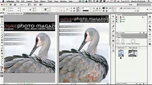 Create Alternate Layouts With The Same Content Using Adobe