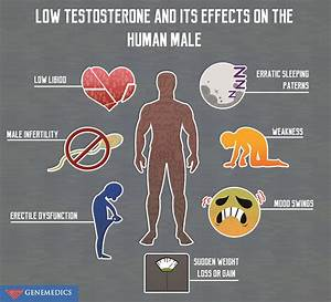 Low Testosterone And Its Effects On The Human Male