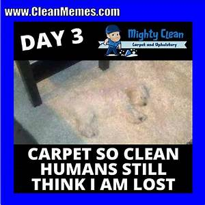 Funny Clean Memes | www.pixshark.com - Images Galleries ...