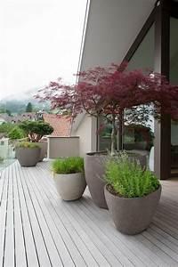 80 ideen wie ein minimalistischer garten aussieht With französischer balkon mit garten bonsai baum