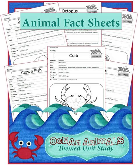 themed activities the crafting 915 | Ocean Animal Fast Fact Files