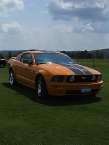 Grabber Orange Mustangs