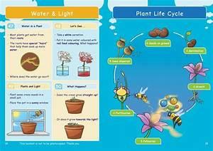 Ks2  Science  Biology  Plant Growth  U0026 Lifecycles  U2013 Oaka Books