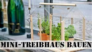 Treibhaus Selber Bauen : treibhaus bauen youtube ~ Michelbontemps.com Haus und Dekorationen