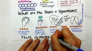 Pneumonia Causes And Symptoms