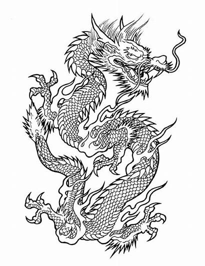 Dragon Tattoo Chinese Drawing Japanese Flash Outline
