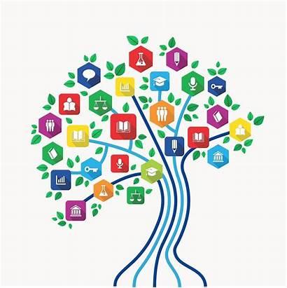 Teacher Resources Knowledge Demonstrating Tree Teaching Resource