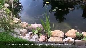 Gartenteich Mit Bachlauf : gartenteich neuer bachlauf youtube ~ Buech-reservation.com Haus und Dekorationen