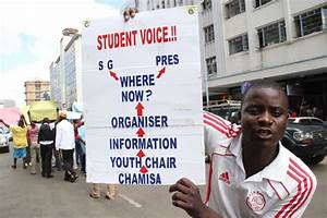 LATEST: MDC-T Youths Demonstrations in Pictures | The Herald