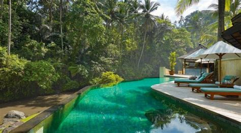 Balis Tropical Paradise Ubud Resort by Pin By Wydra On Tropical Pool Bali Resort Ubud Hotels Ubud