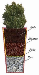 Große Pflanzkübel Richtig Befüllen : die richtige bepflanzung von zink blumenk beln ~ Buech-reservation.com Haus und Dekorationen