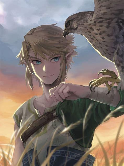 Best 25 Link Zelda Ideas On Pinterest Zelda The Legend