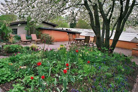 Der Garten Unter Dem Kirschbaum  Langhirts Gartenblog