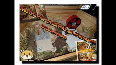 Was Braucht Ein by Was Braucht Alles F 252 R Eine Hamster Einrichtung