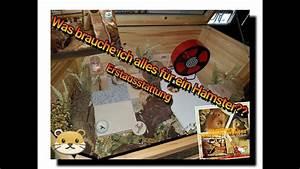 Was Braucht Man Alles Zum Streichen : was braucht man alles f r eine hamster einrichtung youtube ~ Markanthonyermac.com Haus und Dekorationen