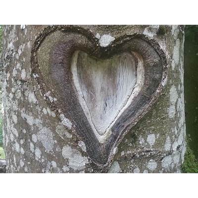 Sun Hats & Wellie Boots: Nature Heart Art - for Valentine