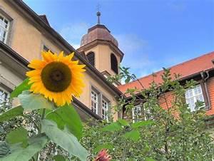 Lohr A Main : das aloysianum in lohr a main ~ Yasmunasinghe.com Haus und Dekorationen