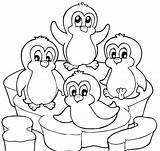 Coloring Penguin Pages Cute Christmas Popular sketch template