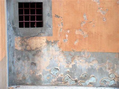 remontee capillaire mur interieur remont 233 es capillaires