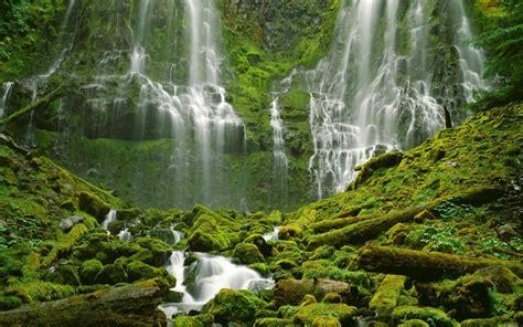 Nature Image Hd by Water Nature Trees Waterfalls Desktop Hd Wallpaper 305871