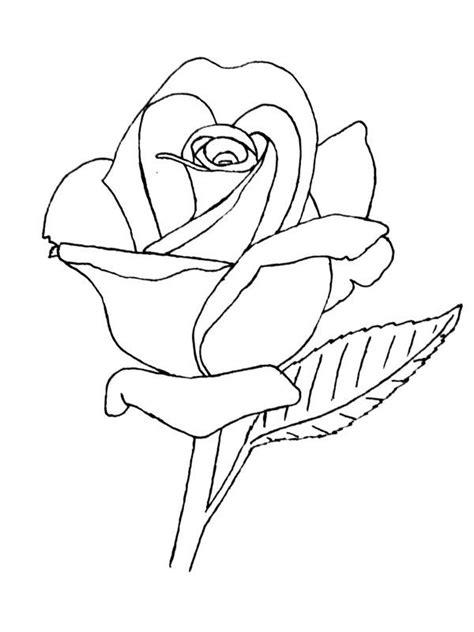 rose lineart  groundhogdeviantartcom  atdeviantart