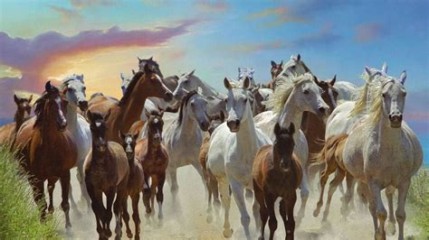 galloping horses  wallpapers hd